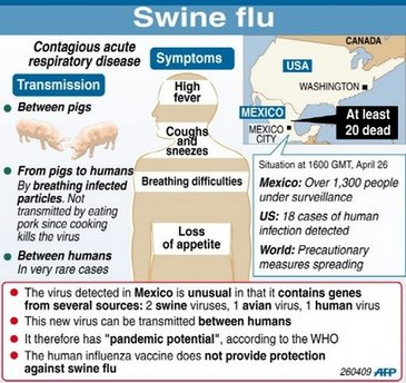 World govts race to contain swine flu outbreak