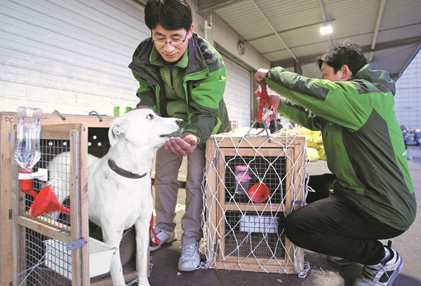 As pets become like family, relocation services boom