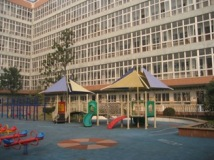 International Division Of Shanghai Gold Apple School