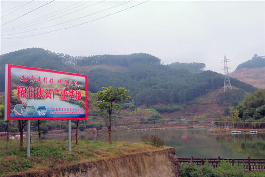 Wushi, where rural development meets modern, happy and green ideas