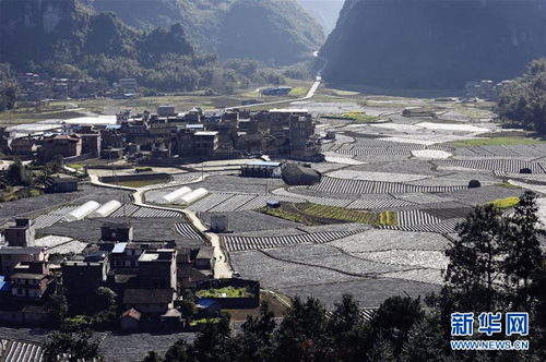 Hechi China  city pictures gallery : Agricultural scenery in Bantuan village, Luocheng Mulao autonomous ...