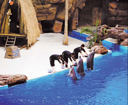Hangzhou Polar Ocean Park offers a range of shows and more than 16 ...