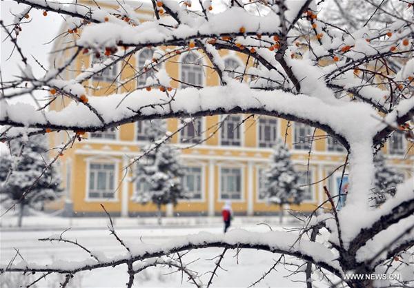 Hulun Buir China  city photo : Snowfall hits Hulun Buir City, North China's Inner Mongolia[1]