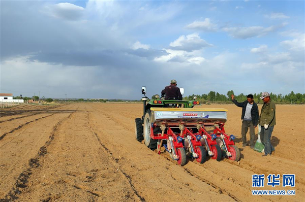 Bayannur China  city photos gallery : Farmers in the Uxin Banner of the city of Erdos, Inner Mongolia seed a ...