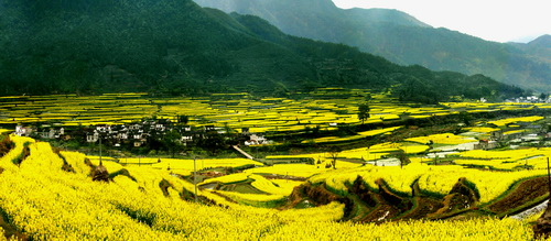 Shangrao China  City pictures : Beautiful countryside of Wuyuan