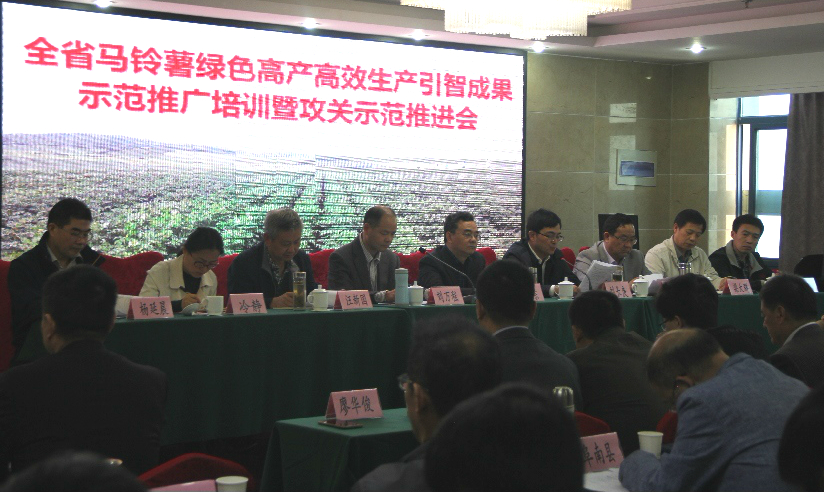 Foreign potato know-how introduced to Anhui province