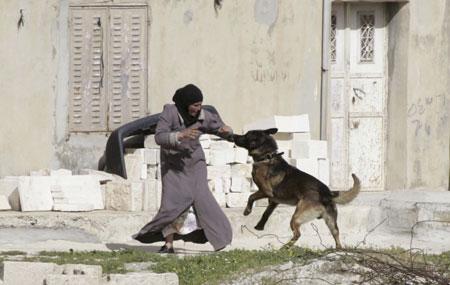 ام فلسطينية وكلب يهودي...