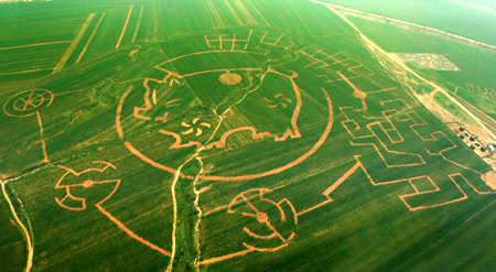Worlds Largest Corn Labyrinth picture