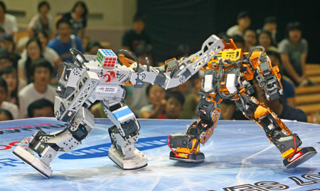 Combative robots fight each other