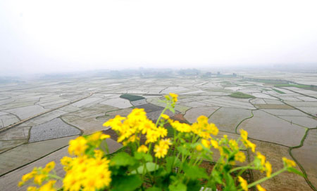 Guangxi relieved from prolonged drought