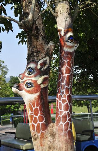 animals youre barking up the wrong tree1chinadailycomcn