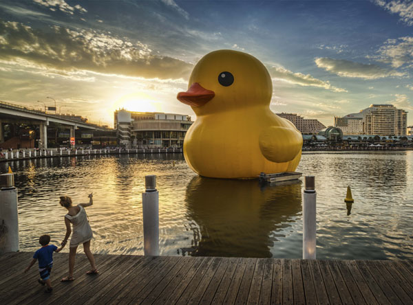 Giant rubber duck set to float in Beijing[1]|chinadaily.com.cn