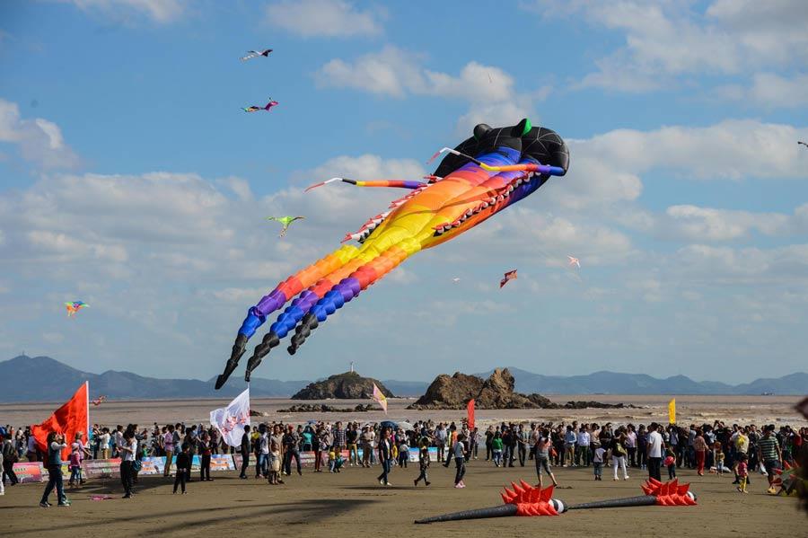 Asian kite festival