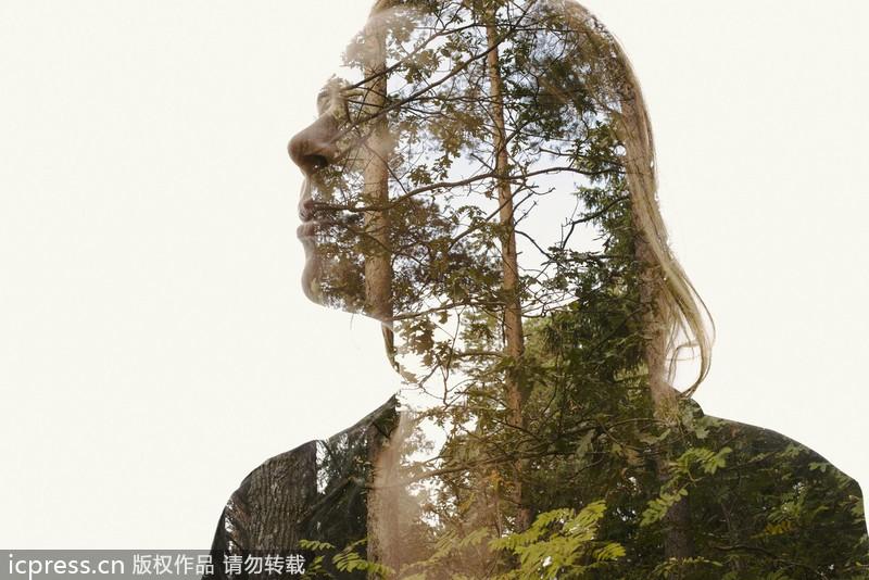 Transcendentalism Man Vs Nature