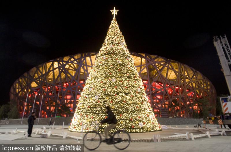 Beautiful Christmas trees around the world[5]- Chinadaily.com.cn