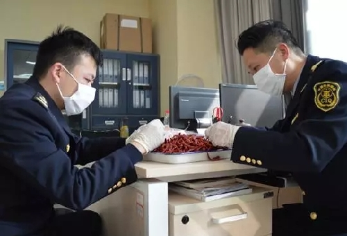 Chongqing tastes new chilies with 14 ton indian import for Bureau quarantine
