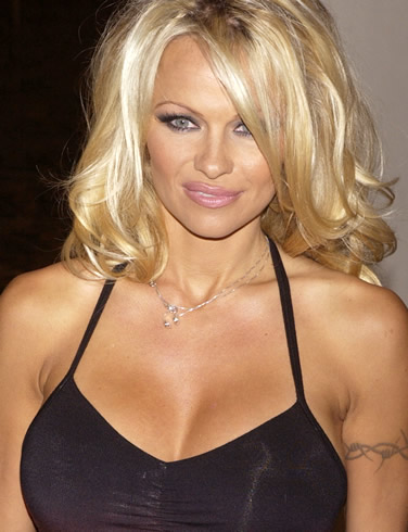 Pamela Anderson images attachment showbiz china daily