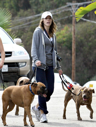 Celebrity fashion, dog walking