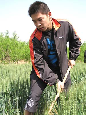 Chen Qi works in the fields surrounding Pan Tao [Xinhua]