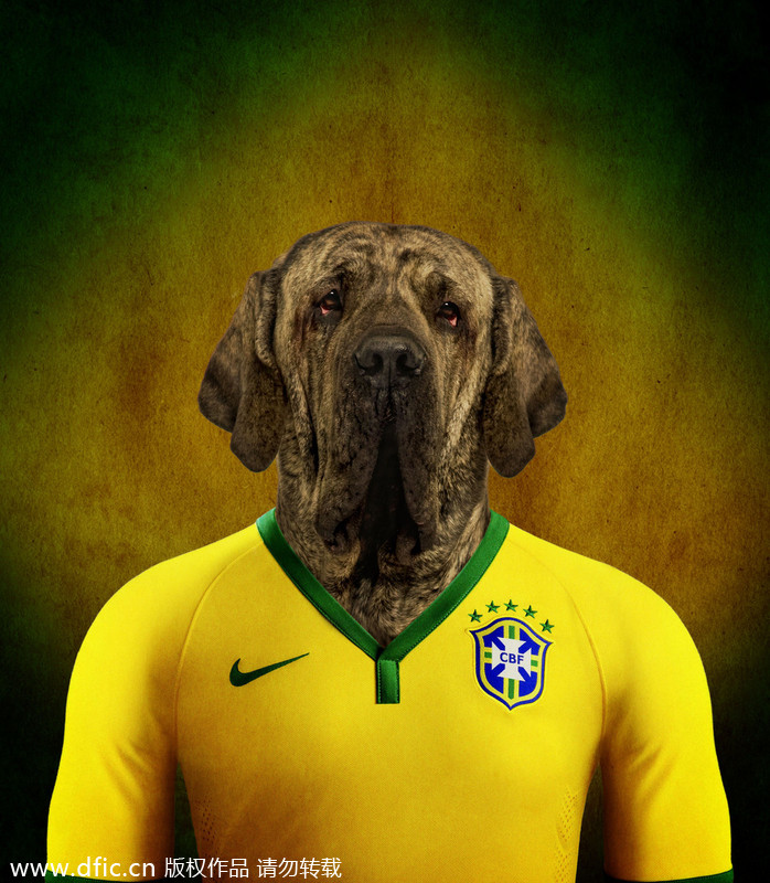 9e11242eb Dogs in national football team jerseys 1 - Chinadaily.com.cn