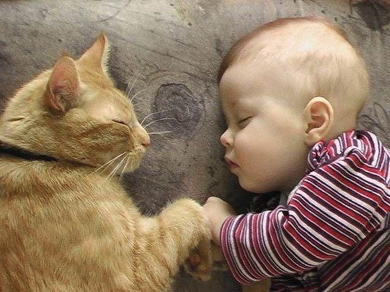 萌娃睡觉可爱图片
