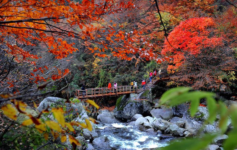 Yunwu Mountain in late autumn[1]