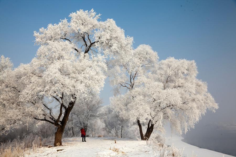 Rime scenery in Jilin[1]