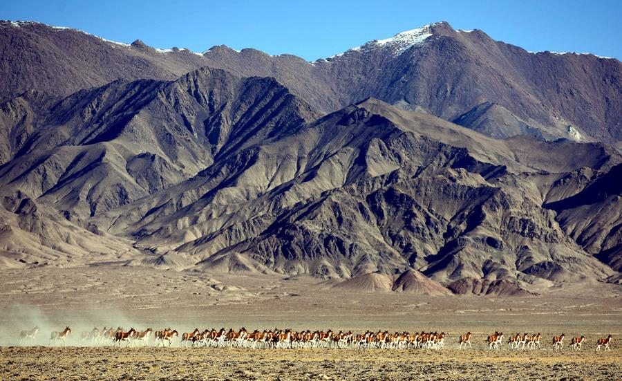 Scenery at Altun Mountains Nature Reserve in Xinjiang[1]