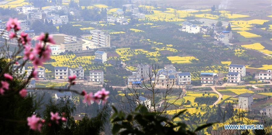 Spring scenery in C China[1]