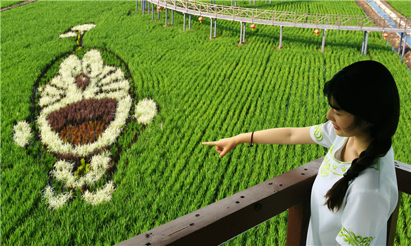 Agri-tourism booms as colorful concepts crop up across the region - Lifestyle