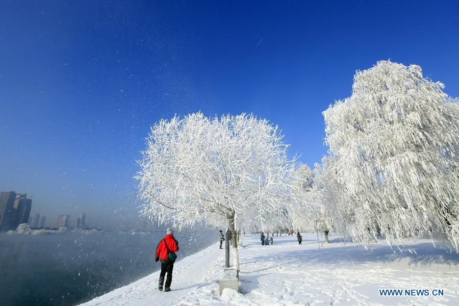 Jilin City China  city pictures gallery : ... rime in Jilin city, Northeast China's Jilin province. [Photo/Xinhua