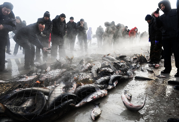 Winter fishing festival marked in ne china 6 chinadaily for Ice fishing expo