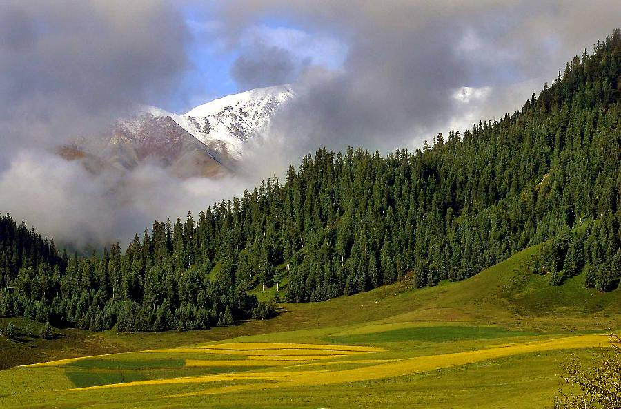 Scenery of qilian mountains6chinadaily scenery of qilian mountains voltagebd Images