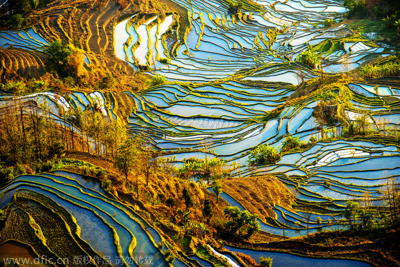 world s most colorful landscapes 2 chinadaily com cn