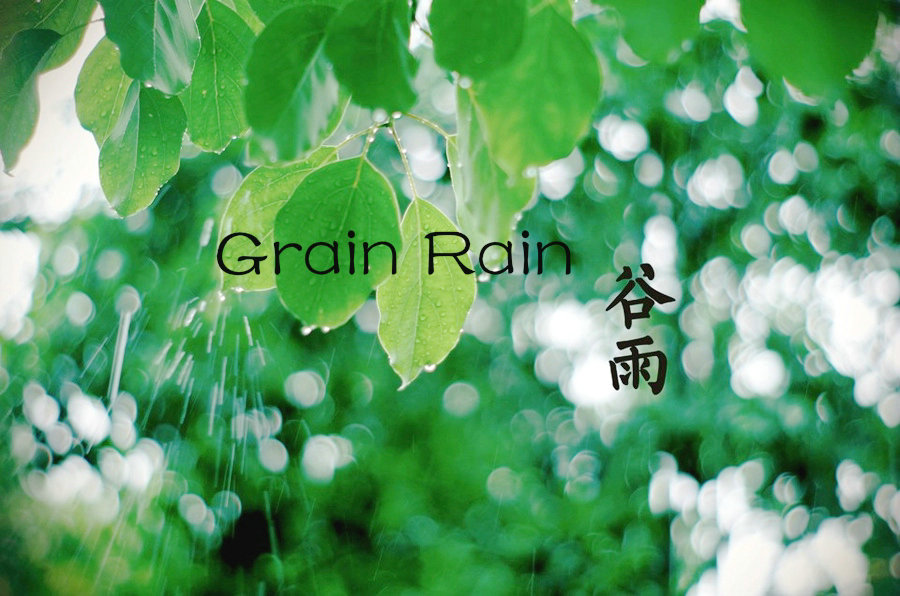 Image result for grain rain