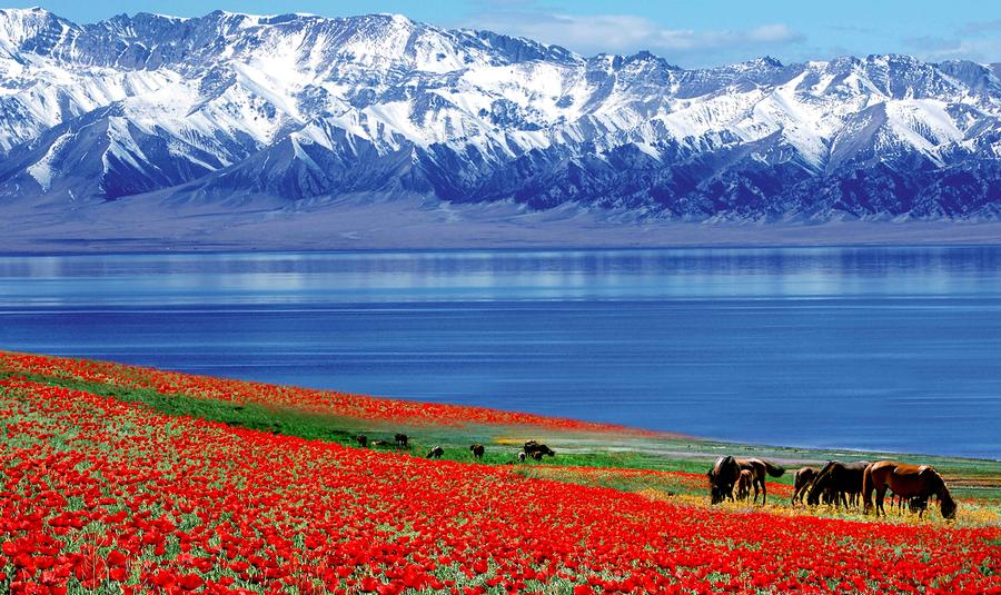 breathtaking scenery of china s xinjiang 2   chinadaily   cn