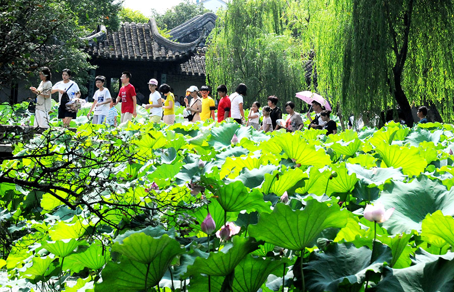Lotus Flower Brightens Zhuozheng Garden In Suzhou1 Chinadailycomcn