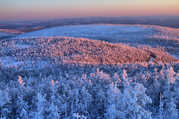 Inner Mongolia promotes its winter charm