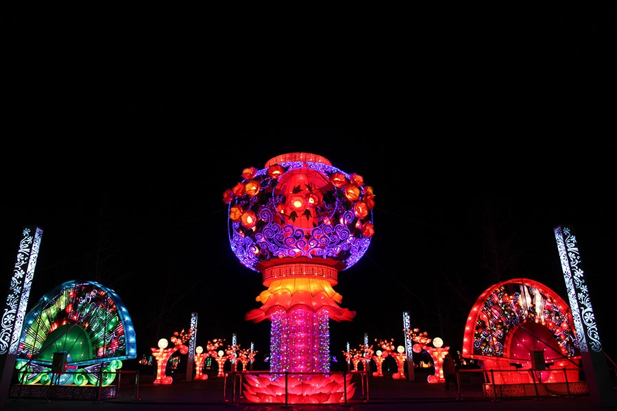 lanterns light up beijing rose park for spring festival 5 chinadaily