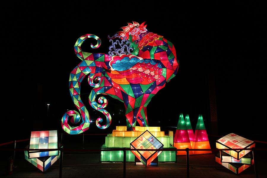 Lanterns Light Up Beijing Rose Park For Spring Festival1