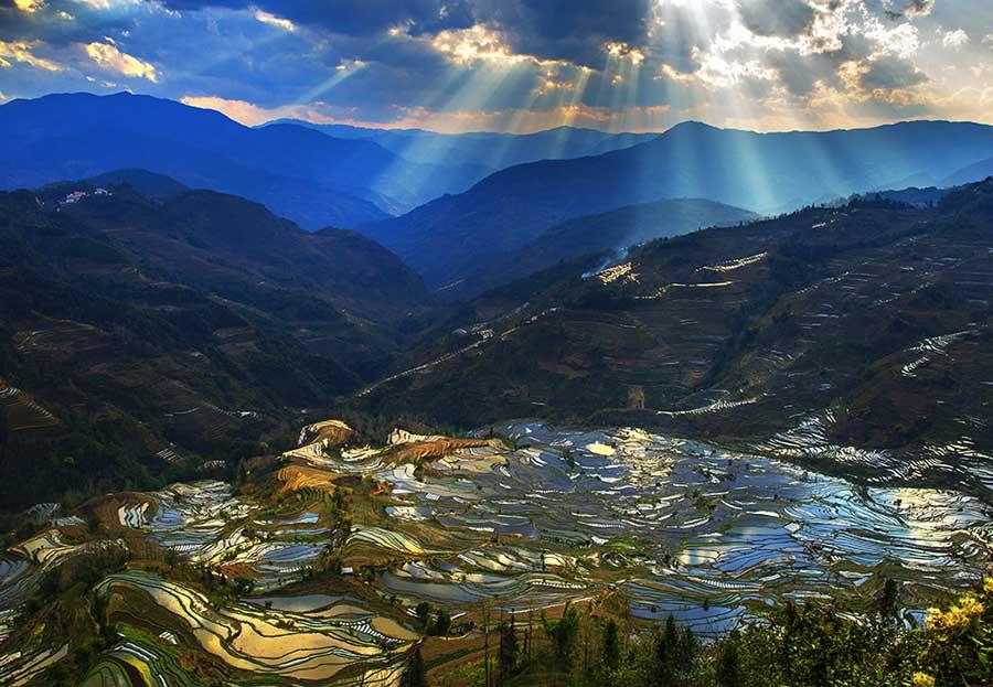 Hani Terrace welcomes pinnacle season for beauty