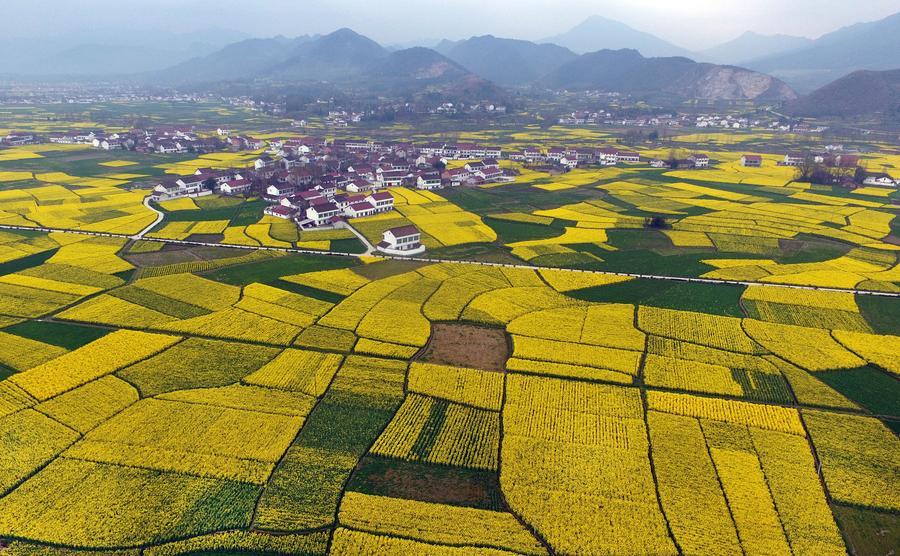 China | Familypedia | FANDOM powered by Wikia  |China Farmland