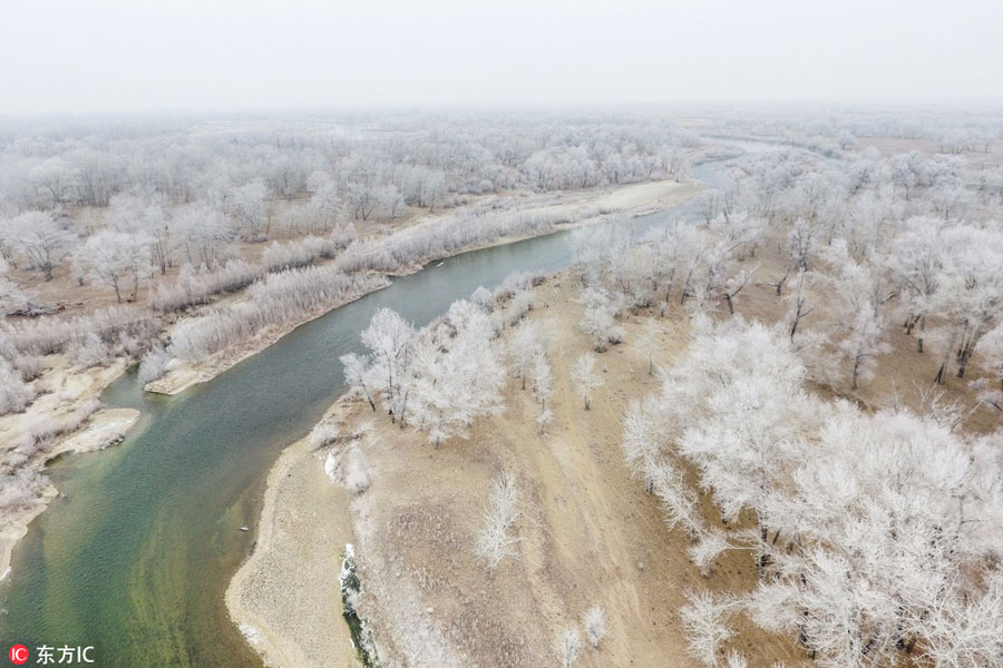Aerial view of rime-covered trees in NW China