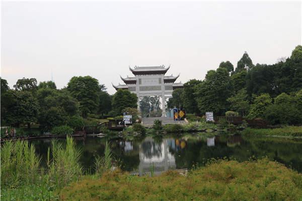 Wonderful wetlands serve to inspire city dwellers