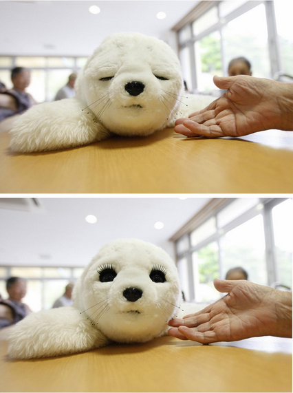 Japan Tsunami Robots Robot Seals Help Heal Japan's