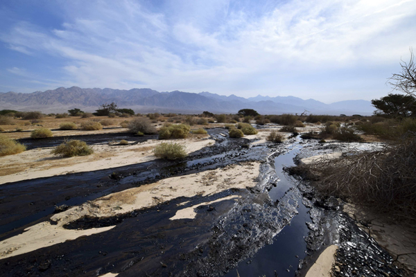 Oil spill in Israel, one of 'worst' environmental disasters