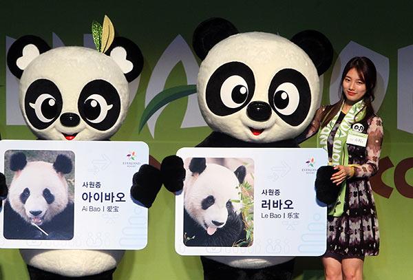 Panda pair unveiled to S Korean public[1]- Chinadaily com cn