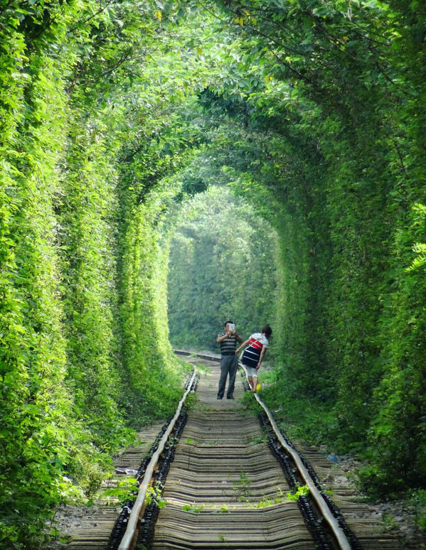 Nanjing 'Love tunnel' on a par with Ukrainian one[1]- Chinadaily.com.cn