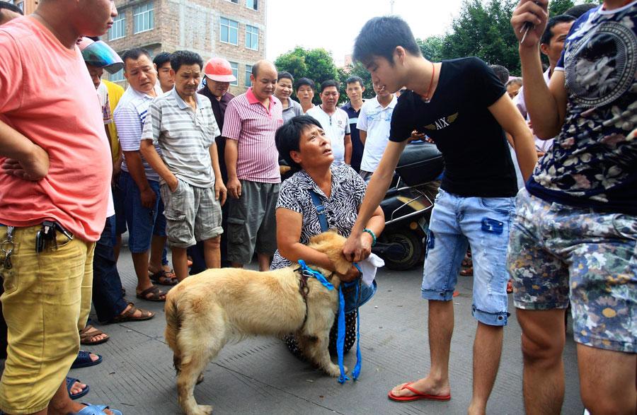 Yulin Dog Meat Festival 2020.Yulin Dog Meat Vendors Make Money Off Activists 1