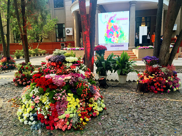 Thousands of flowers flown from Colombia to Beijing for showcase